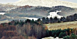 W Bieszczadach spadł już pierwszy śnieg (ZDJĘCIA)