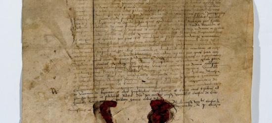 Najstarsze dokumenty Leska odnalezione! (ZDJĘCIA)