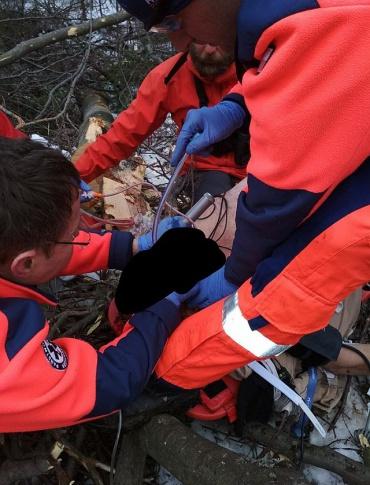 BIESZCZADY: Tragedia podczas prac w lesie. Pilarz zmarł w szpitalu
