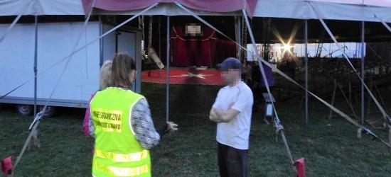 Niezły cyrk… zatrudniał nielegalnie (ZDJĘCIE)