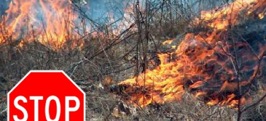 Pożar podpalonych łąk. Potrzebna interwencja trzech załóg straży pożarnej